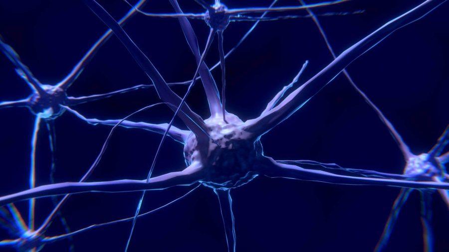 Ce să-i spui copilului despre dezvoltarea creierului? 3