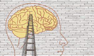 Read more about the article Ce să-i spui copilului despre dezvoltarea creierului?