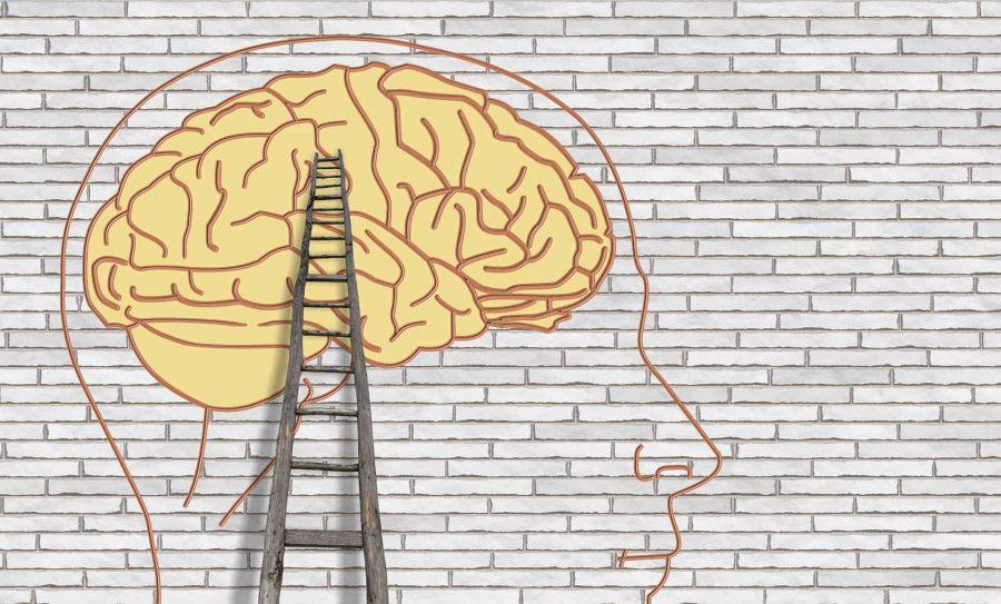 Ce să-i spui copilului despre dezvoltarea creierului? 1