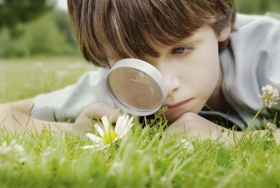 copil care cauta in iarba cu o lupa pentru a-si extinde cunostintele si a-si dezvolta inteligenta emotionala
