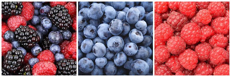 antioxidanti - fructe de padure