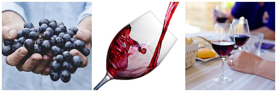 antioxidanti - struguri, vin rosu
