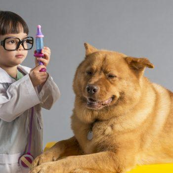 fetita doctor veterinar