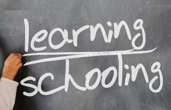 Read more about the article 5 Lecţii esenţiale în viaţa – pe care copiii nu le vor învăţa la şcoală