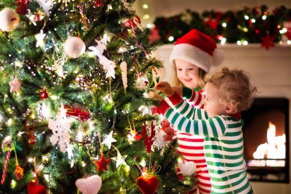 Read more about the article 5 motive strașnice pentru care să cumperi un brad în ghiveci Crăciunul acesta