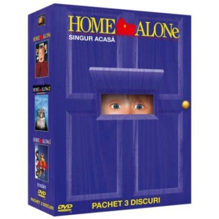 Filme de Crăciun Singur acasa