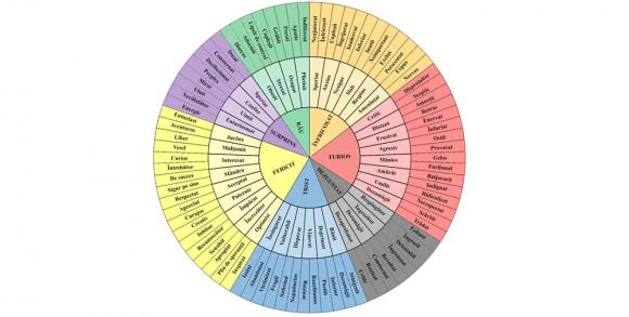 Read more about the article Iată cât este de ușor să-i înveți pe copii despre emoții