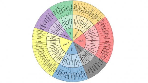 Iată cât este de ușor să-i înveți pe copii despre emoții 11