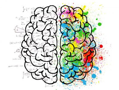 brain colored and formulas