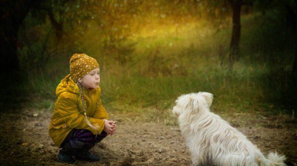 6 modalități prin care să încurajăm bunătatea copiilor 29
