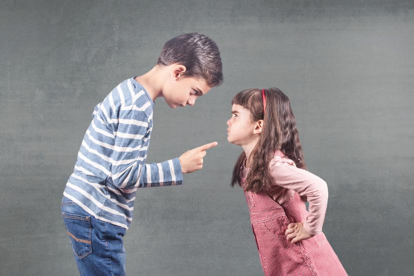 disputa, ceartă copii