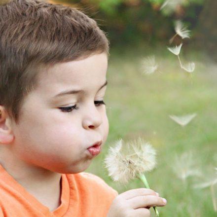 Read more about the article De ce să susții mirarea în educația copilului tău?